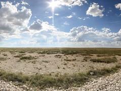 Namibie - Etosha - 26-04-2014 - 14h33