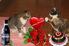 Mervi's Birthday 2014
