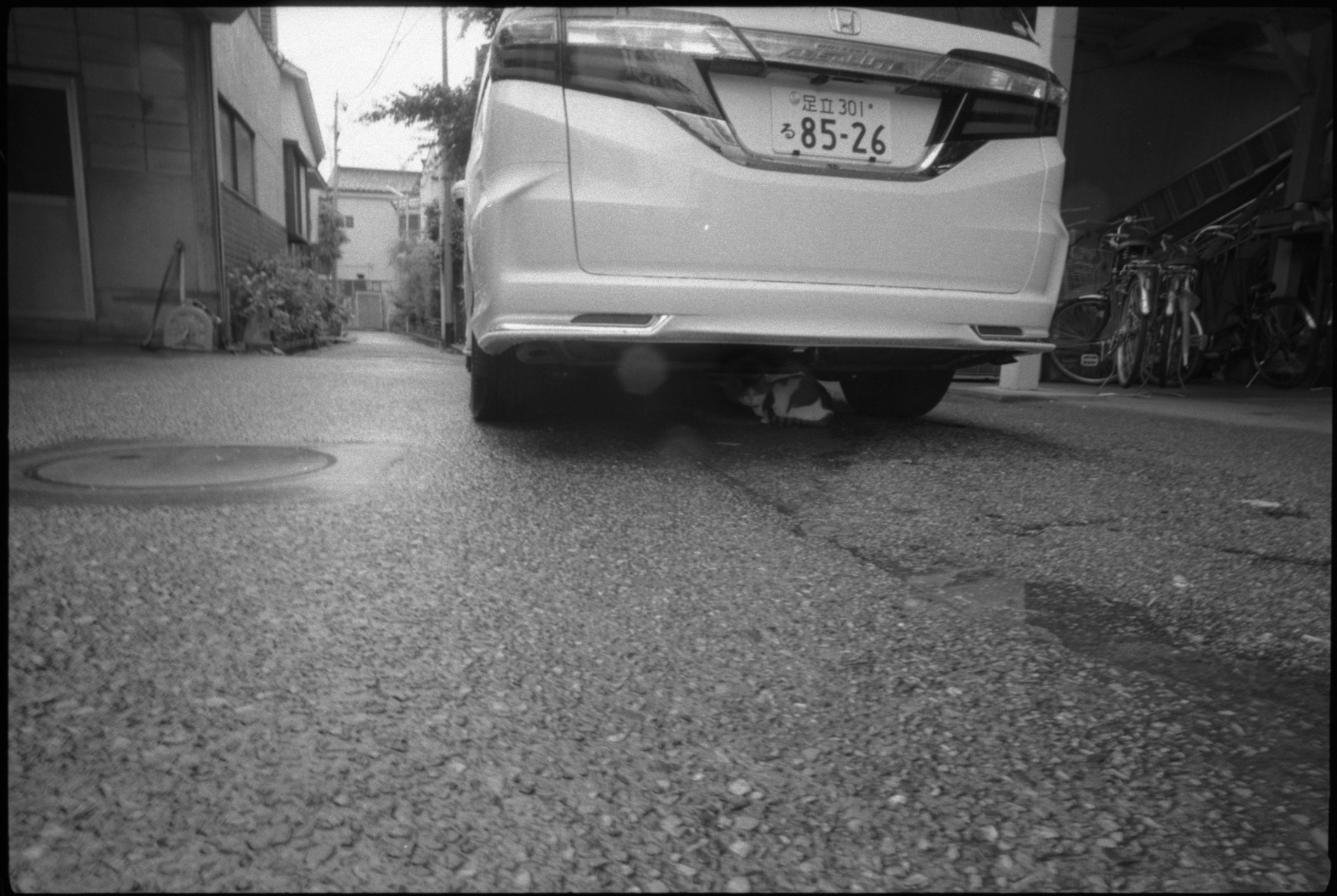 20140612 LeicaM4-P Biogon21G 400TX TMD 006