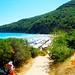 Thassos Paradise BeachjpgA