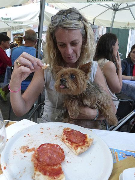 dîner du chien
