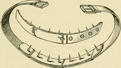 """Image from page 266 of """"The standard horse book, comprising the taming, controlling and education of unbroken and vicious horses"""" (1895)"""