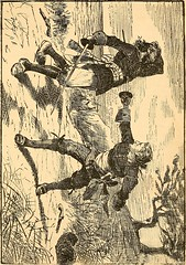 """Image from page 236 of """"Captain William Kidd, and others of the pirates or buccaneers who ravaged the seas, the islands, and the continents of America two hundred years ago"""" (1874)"""