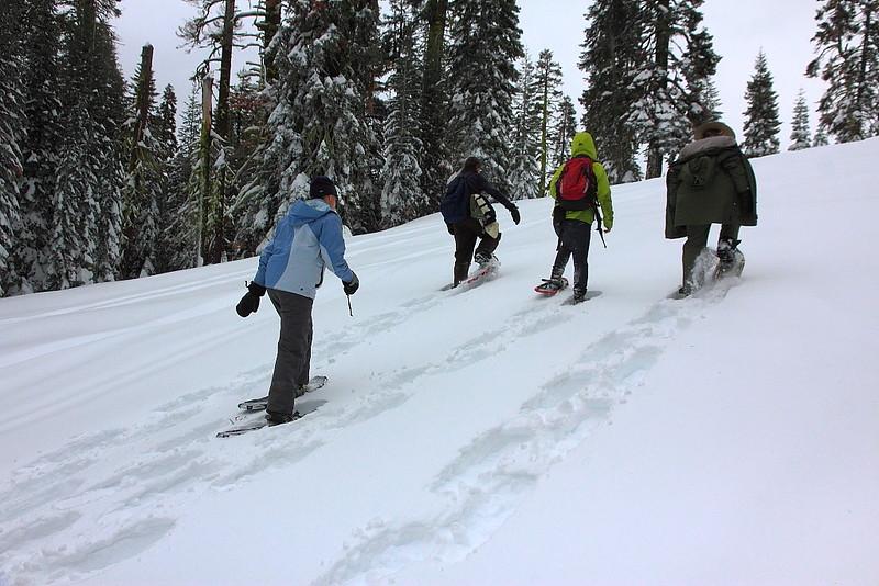 IMG_8387 Ranger-Led Snowshoe Walk