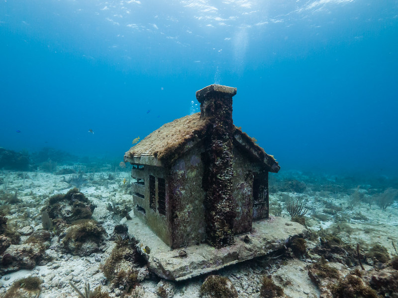 Urban Reef House