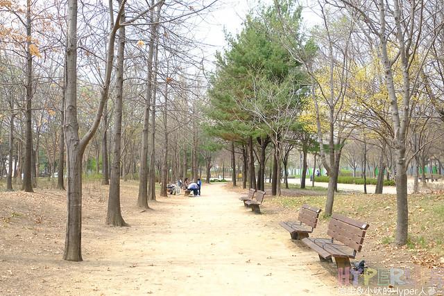 首爾林seoul forest (11)