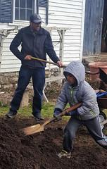 shoveling_compost2