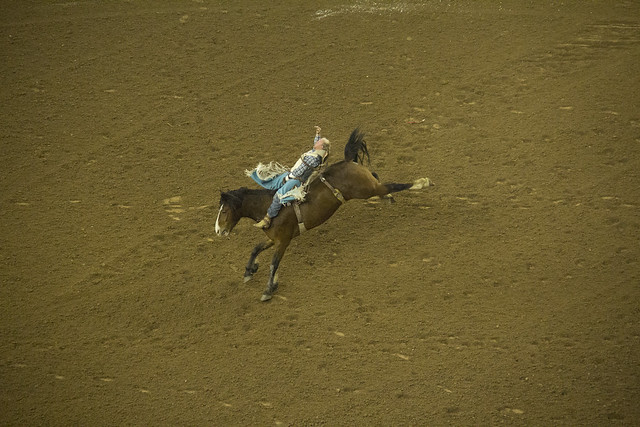 Rodeo and Concert_36