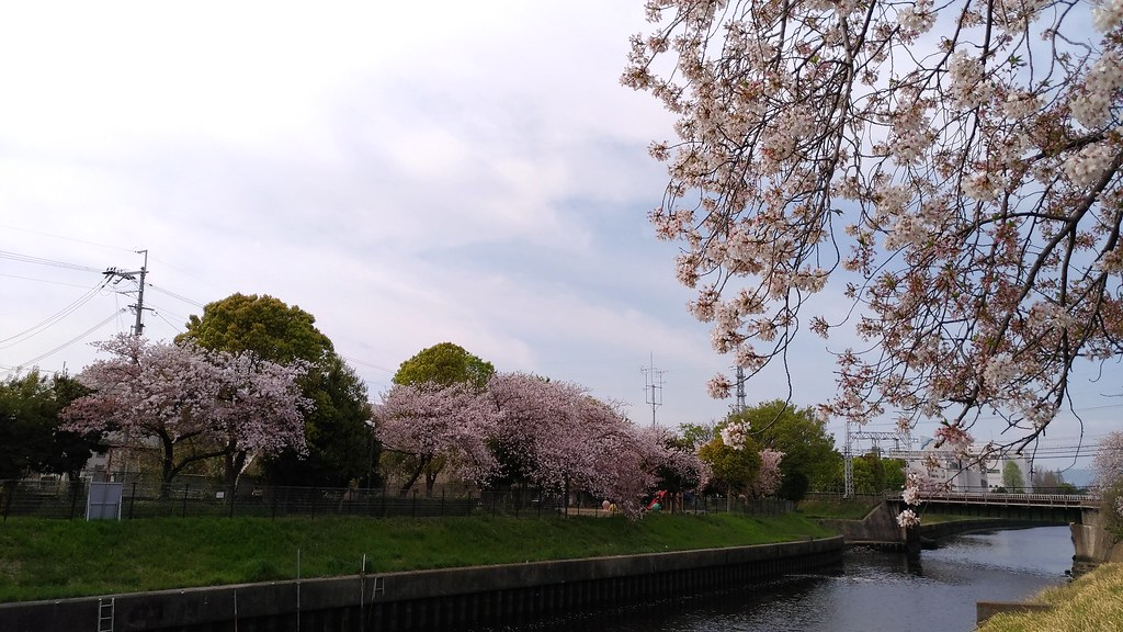椋橋神社 近くの川