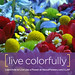 LIVE LIKE A FLOWER: Live Colorfully