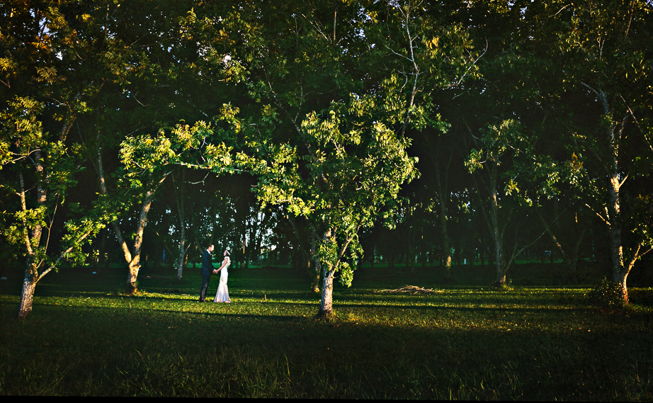 wedding797
