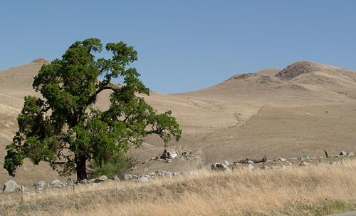 california centralvalley ncoast0314