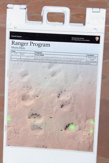 IMG_5621 Ranger Program: Fossil Walk