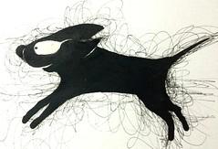 Run dog run...