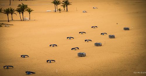 beach sand nikon palmtrees fortlauderdale vignetting ftlauderdale d600 tedsphotos nikonfx portevergladeshal