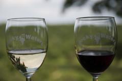 wine glass(1.0), wine(1.0), drinkware(1.0), stemware(1.0), glass(1.0), white wine(1.0), red wine(1.0), champagne stemware(1.0), drink(1.0), alcoholic beverage(1.0),