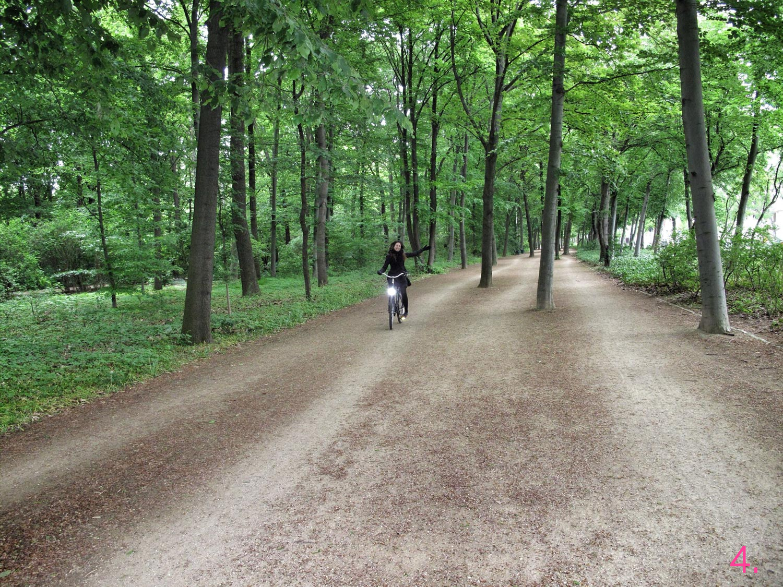 tiergarten_berlin_bici_coto de caza