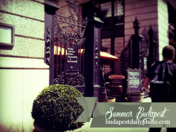 Budapest Photo May Programs