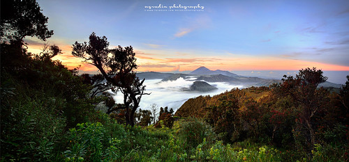 travel sky panorama mountain art nature misty sunrise indonesia island nikon slow aerialview mount slowshutter scapes mountbromo gnd09 azrudin