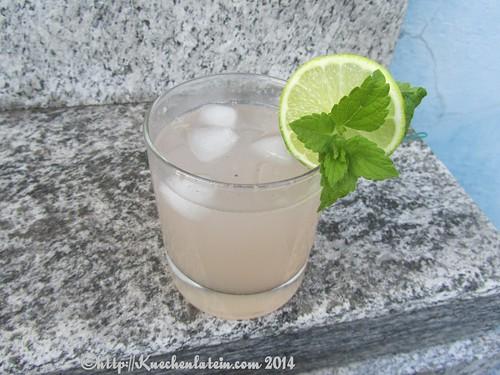 ©Rhabarber-Ingwer-Limonade Rhubarb Cooler (2)