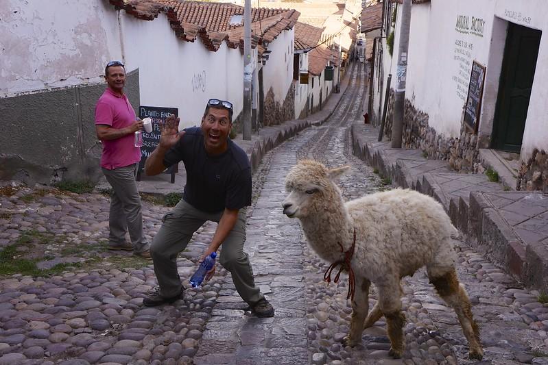 cuzco 85