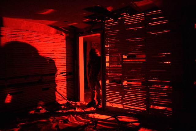 Jerm IX: Red Dead Redemption