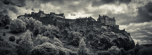 uk trees edinburgh edinburghcastle hill