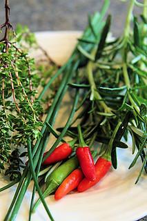 Garden herbs IMG_0977 R