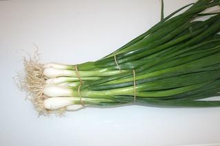 01 - Zutat Frühlingszwiebeln / Ingredient scallions