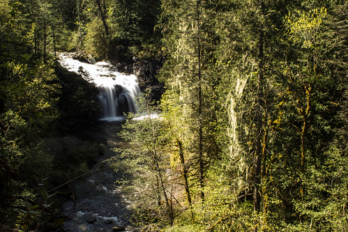 longexposure trees canada love nature water beautiful canon river landscape photography photo waterfall pretty photos britishcolumbia picture vancouverisland slowshutter shutterspeed comoxvalley canonrebelt3i