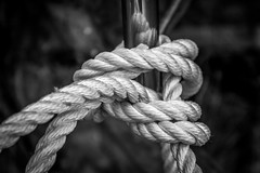 macro photography, monochrome photography, close-up, rope, monochrome, black-and-white,