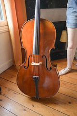 bowed string instrument, string instrument, violone, bass violin, double bass, cello, string instrument,