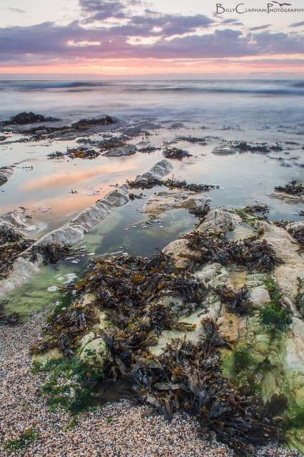 sunrise rockpool coast ocean seaweed flamborough