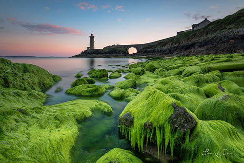 longexposure bridge sunset sea lighthouse seascape france green beach nature wet rose architecture landscape nikon brittany coucher bretagne vert breizh reflet lee brest 29 nikkor nuage paysage crépuscule plage phare rocher couleur coucherdesoleil rochers breton nisi bzh finistère galets 1635 couchersoleil galet d610 rouz wetrock rade algue wetrocks poselongue iroise nd1000 radedebrest petitminou phareduminou nikkor1635 erwanleroux rocherhumide rochershumides nikond610 nisifstop