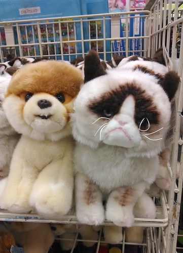 Internet Celebrities as Stuffed Animals