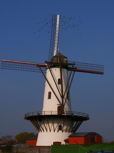 Hostensmolen à Ruiselede