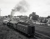Visit of Flying Scotsman and 3801 to Maitland, 18 March 1989.