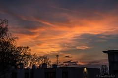 Coucher de soleil à Villemomble_5175