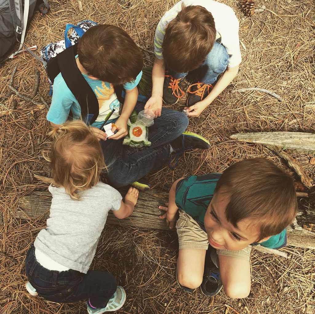 Four geocaches found today!