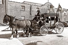 Stockyards Stagecoach