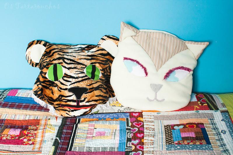 tigre e gato