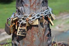 tree locks