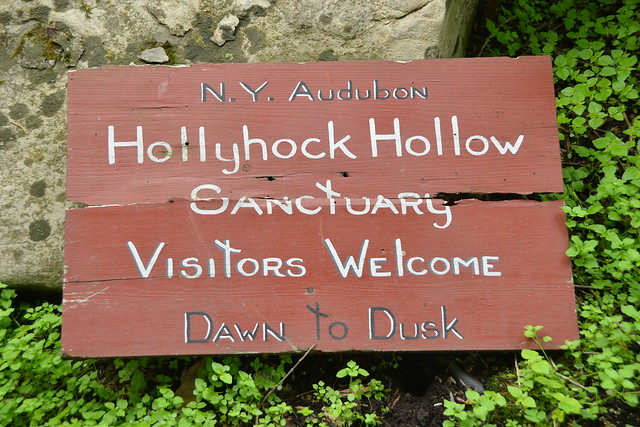 Hollyhock Hollow Sanctuary