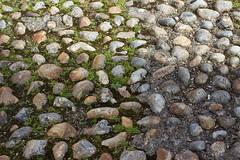 Rye footpath