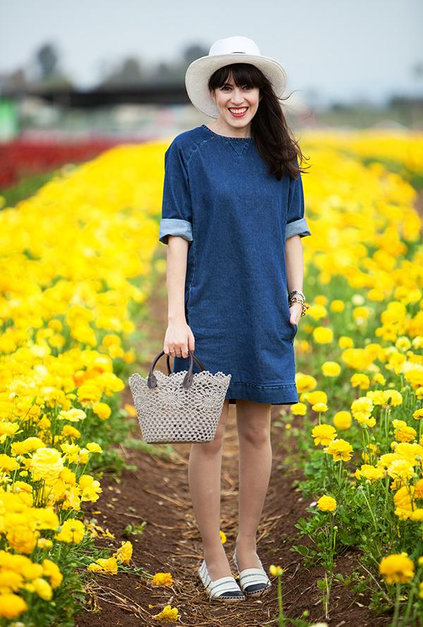 בלוג אופנה, אפונה בלוג אופנה, קטיף נוריות, שמלת ג'ינס, fashion blog, ranunculus field, denim dress