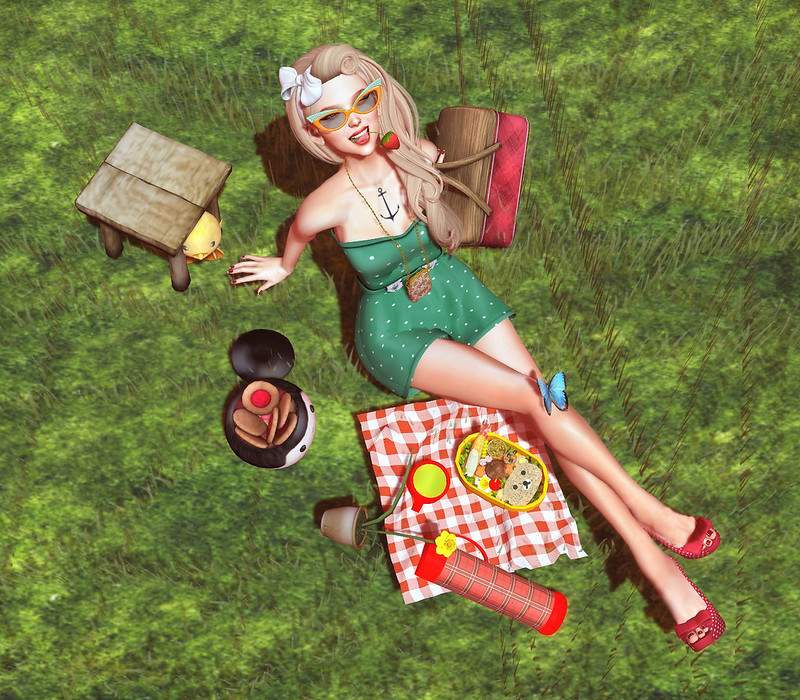 Back in time: a picnic day
