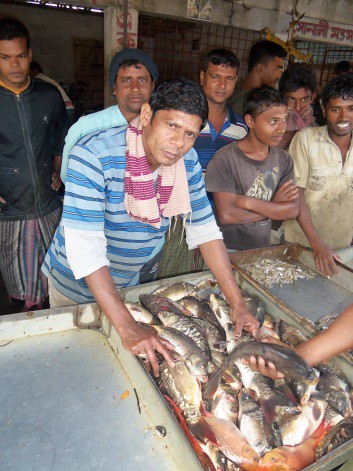 Sales of fish and shrimps at fish market in Arong Ghata, Bangladesh