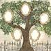 fullfamilytree.com by Full Family Tree