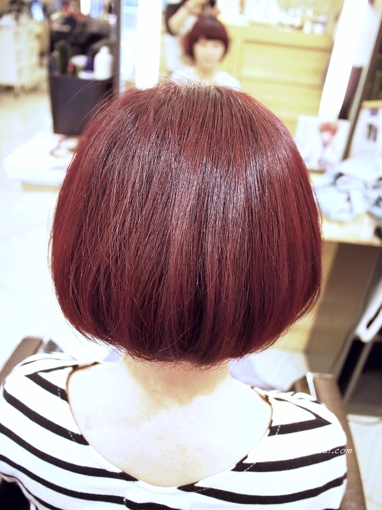 Happy Hair 染髮 (13)