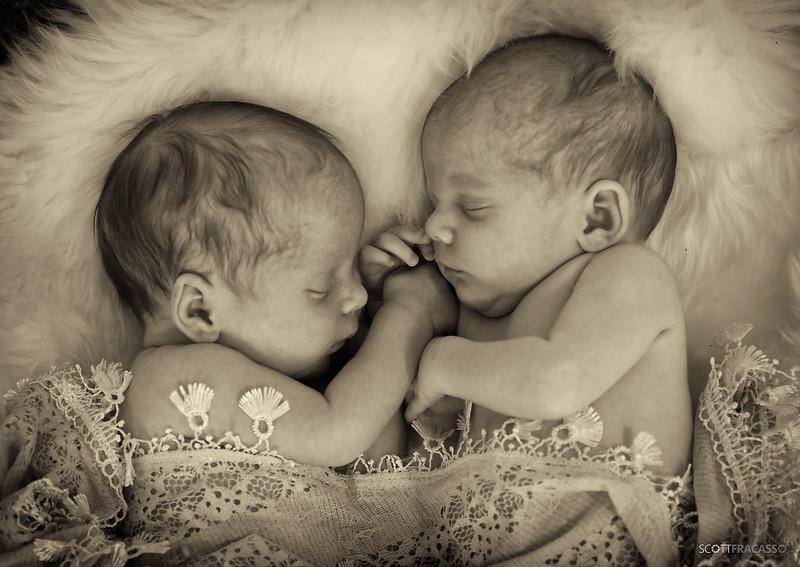 219A9919-sig Newborn twins